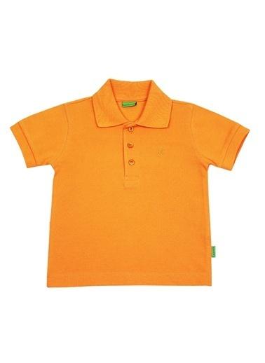 Tişört-O Piti Piti